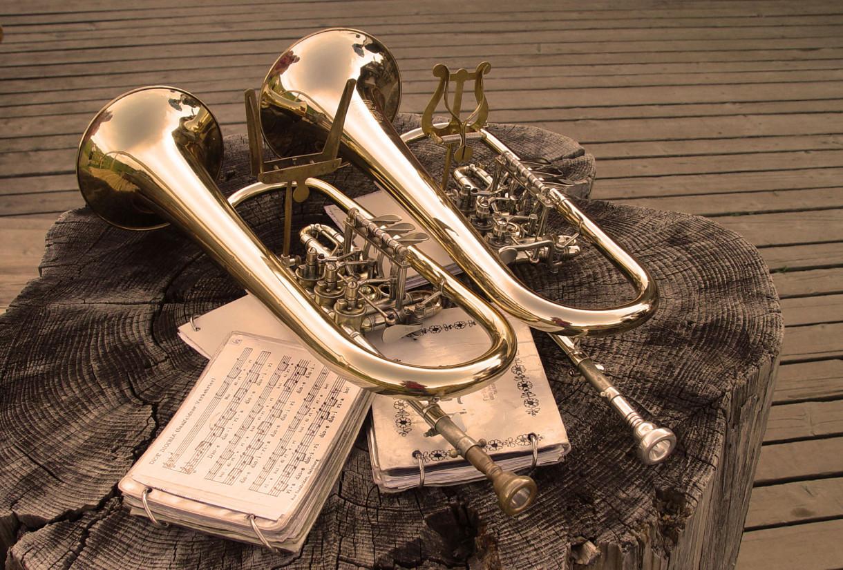 46. Sänger- und Musikantentreffen